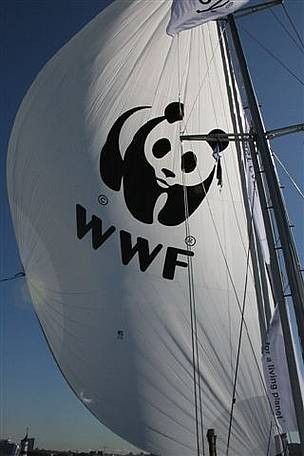 WWF representatives will be lead through the North-East passage by explorer Ola Skinnarmo on a sailing boat, such is the lack of sea ice in the area in recent summers. (June 2009)