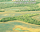 Factsheet Programa Pantanal