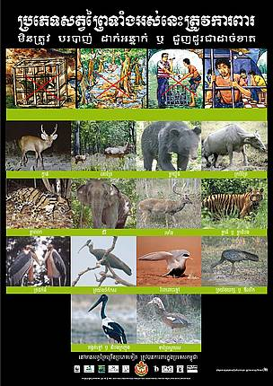 Endangered Species Poster