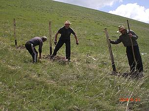 Fencing of the planting area / ©: WWF Armenia