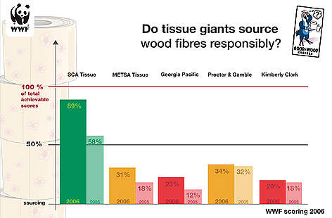Scores on how responsibly companies source their wood fibres for tissue products 2006 rel=