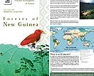 Forests of New Guinea Ecoregion