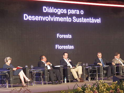 At the Forest Dioalogue side event at Rio + 20 Conference.  rel=