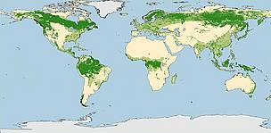 G200 Forest Map / &copy;: WWF