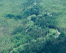 Taiga &amp; Riverine Forest. Sakha Republic (Yakutia), Siberia, Russian Federation. 