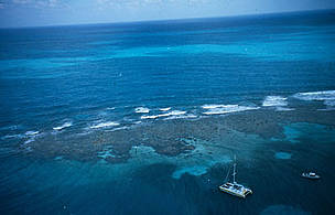 Florida Keys, Florida, United States of America. / ©: WWF-Canon / WORLD TELEVISION