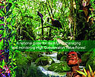 High Conservation value forest toolkit for Papua New Guinea