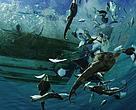 Guitarfish, rays, and other bycatch are tossed from a shrimp boat. La Paz, Mexico.