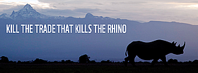 Kill the trade that kills the rhino - join the frontline!  / &copy;: naturepl.com / Rilchard Du Toit / WWF-Canon