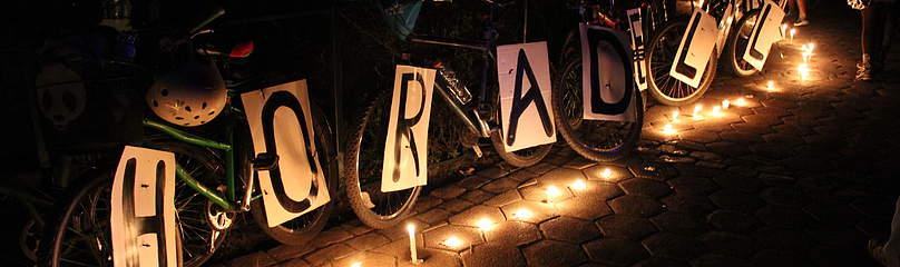 / ©: WWF Chile - Susan DÍAZ