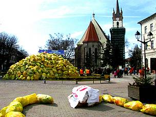 The town of Bistrita in Romania becomes Earth Hour capital in 2012 by collecting 16,7 tons of PET for recycling.