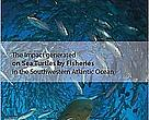 The impact generated by fisheries on Sea Turtles in the Southwestern Atlantic Ocean.