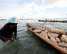 Women mining corals, Wanci, Indonesia