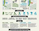 Infografía proyectos liderados por WWF para la iniciativa FLEGT