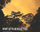 GFTN Quarterly Newsletter, January 2011