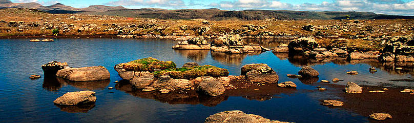 Bale Mountains National Park Highland wetlands,  Ethiopia. / &copy;: WWF-Canon / John E. NEWBY