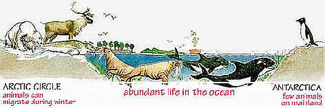 Abundant Life in Oceans. rel=