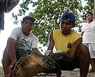Cristina Ordoez (CCC) and villagers tagging a hawksbill turtle at Chiriqui Beach, once the largest nesting site for this species in the Caribbean.