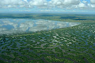 / ©: WWF Madagascar/Xaver Vincke