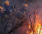 Volunteer fire fighters from the Association for Forest Development and Conservation (AFDC), Lebanon.