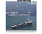 Lifting the lid on Italy's bluefin tuna fishery report cover