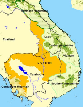 Lower Mekong Dry Forest Ecoregion. / &copy;: WWF