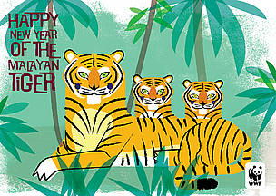 Send a special e-card to friends and family and help spread the word about tiger conservation! / ©: WWF / Radiola