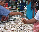 Fishermen selling their catch at a market in Malaysia.