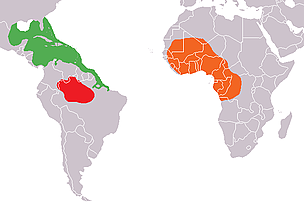Range of the three manatee species / &copy;: Wikimedia Commons