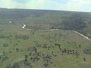 The Mara River flowing from its source, the South West Mau Forests in Kenya. / &copy;: WWF-EARPO / Sam Kanyamibwa