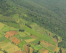 Small-scale farming in newly cleared areas, southwest Mau forests, Kenya. Farming is taking place on extremely steep slopes (up to 60) without soil conservation measures, leading to erosion.