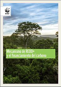 Desarrollo de modelos de negocio  para la restauración de bosques y REDD+ en Paraguay / ©:  DEG, WWF y UNIQUE