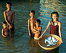Children with a basket full of Mekong freshwater herring. Tonle Sap River, Cambodia.