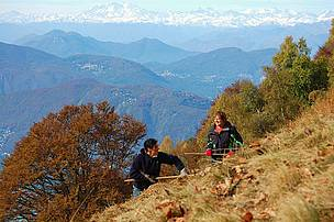 Joanna Schoenenberger (WWF) and Franziska Andres (Trifolium) raking one of several dry meadows on Monte Generoso, Switzerland.