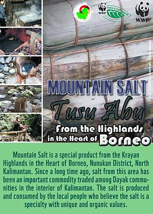 Mountain Salt Tusu Abu, North Kalimantan, Heart of Borneo, HoB