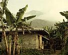 Typical house with Mt Kupe in the background shrouded by clouds, Cameroon.