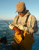 MSC certified fisherman with California spiny lobster at Baja California, Gulf of California, ... / ©: WWF-Canon / Gustavo YBARRA