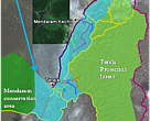This map shows the explored trekking system. The Bkt Teraja Protection forest reserve and proposed extension area are in between the Labi road and LoggingRoadEast. There are many waterfalls and hiking treks (Brown = unmarked path, Orange = more difficult hike or animal trail, Red=hard trek, Blue = river scramble). Nearly all ridges have a kind of trail (orange) that is or has been used by seismic survey staff, military, poachers, or animals.