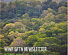 GFTN Quarterly Newsletter, October 2010