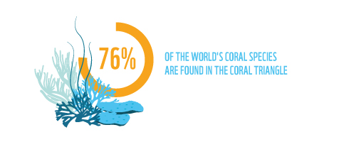 76percent of the world's coral reef species are found in the Coral Triangle