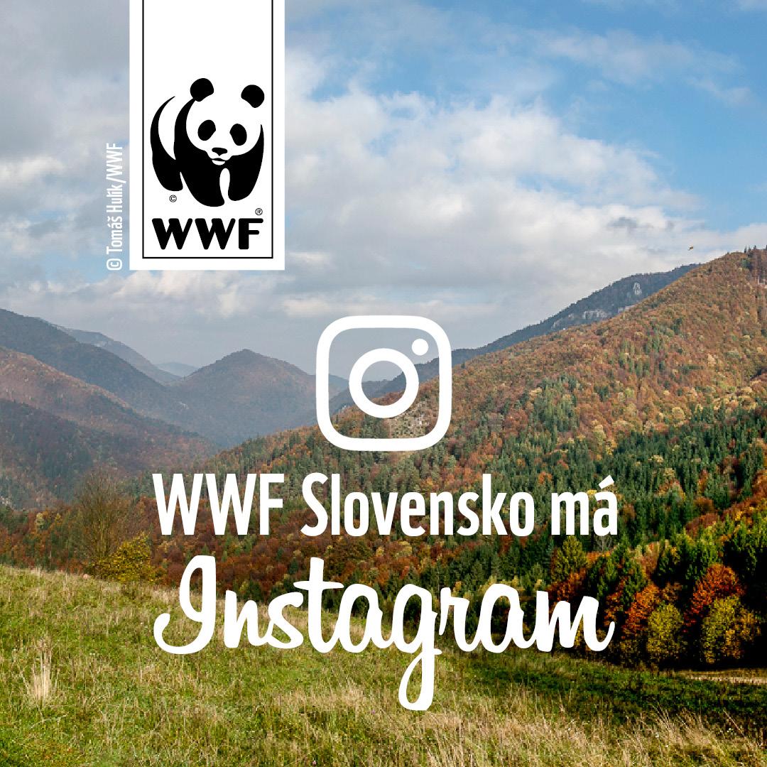INSTAGRAM WWF SLOVENSKO