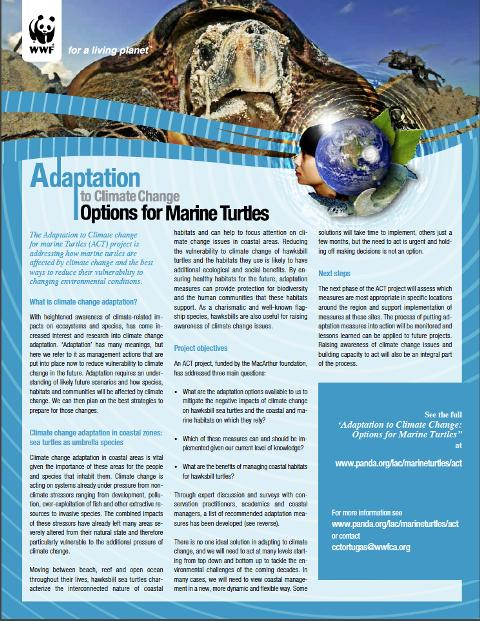Adaptation to Climate Change. Options for Marine Turtles