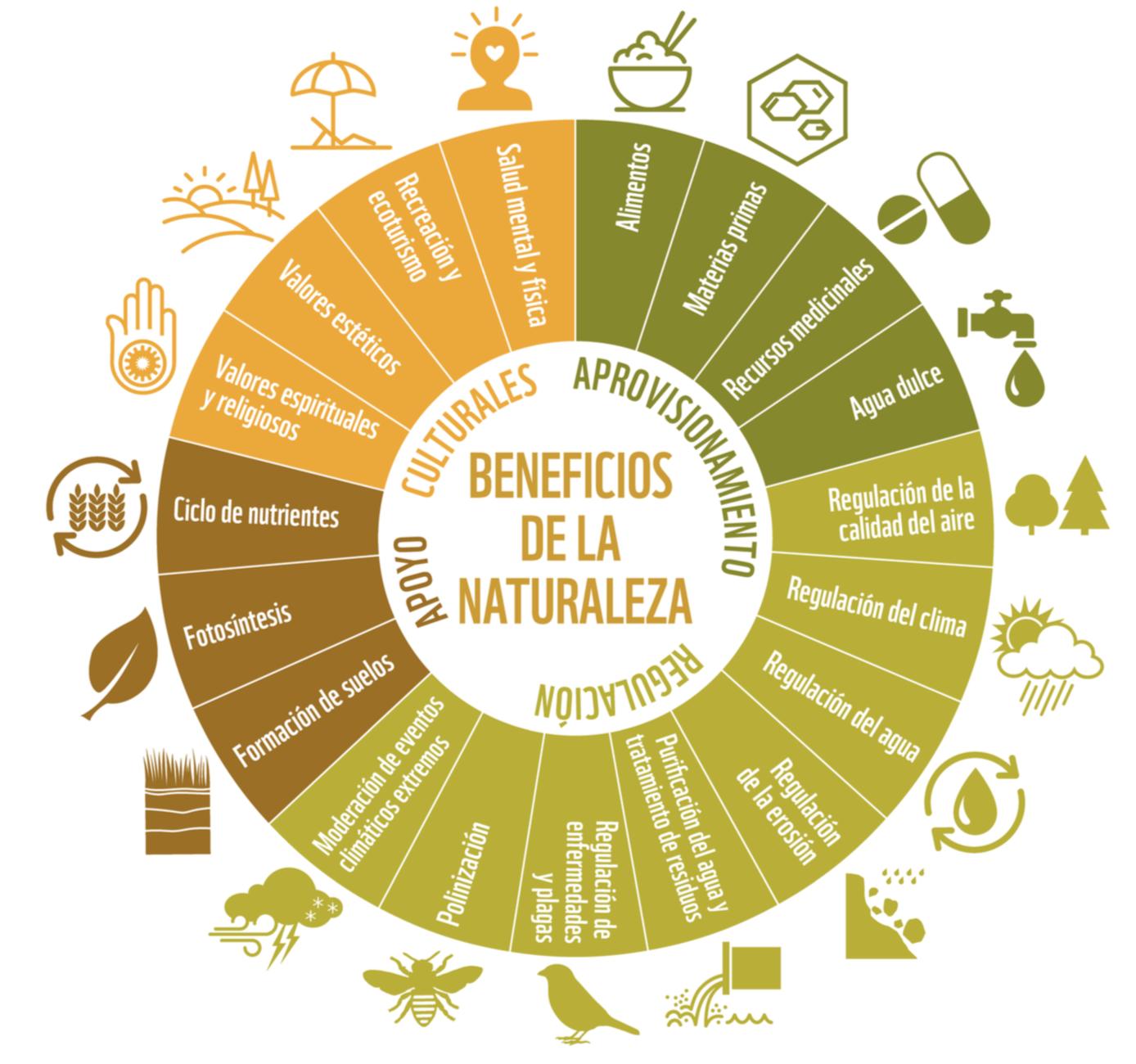 Beneficios de la biodiversidad