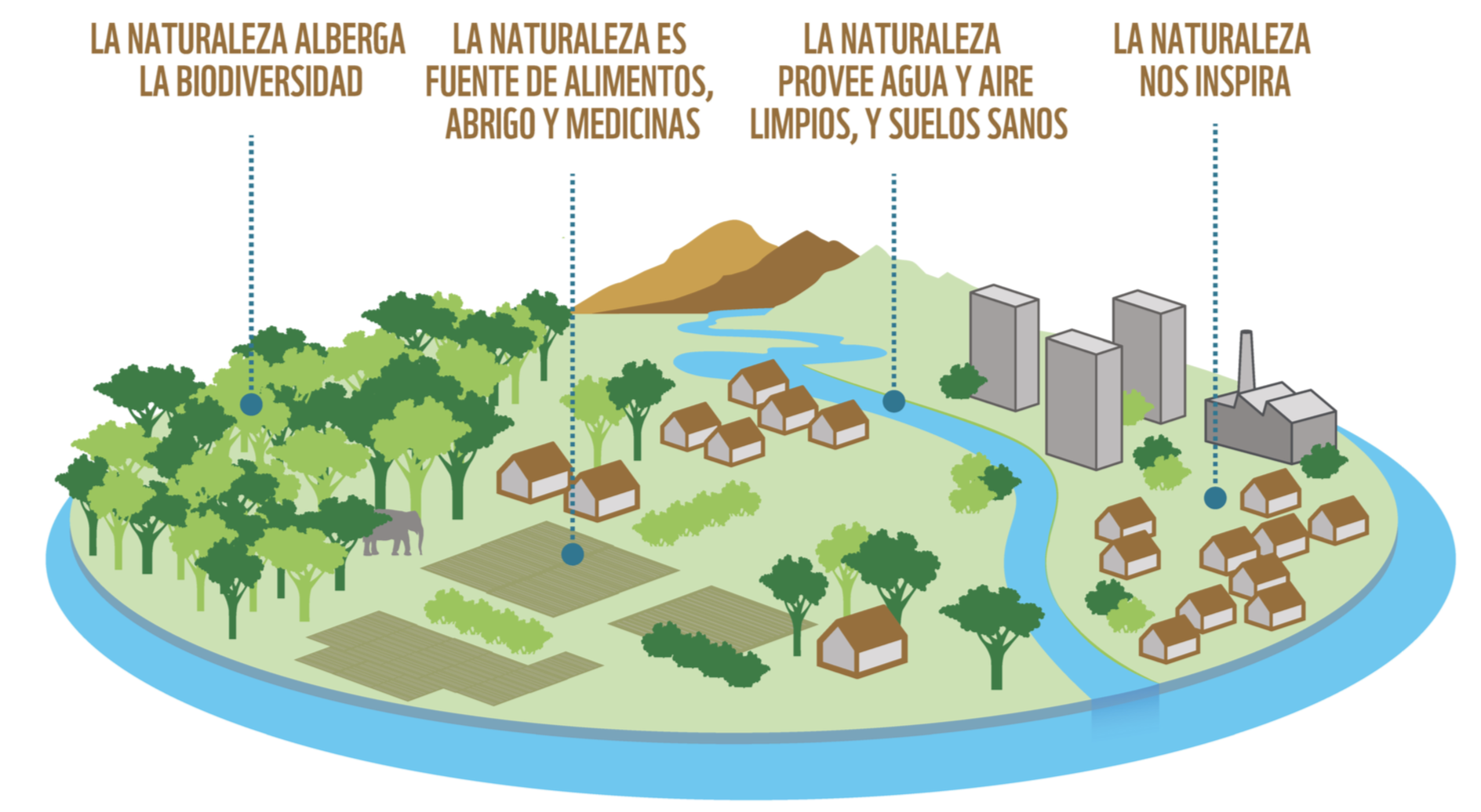 Beneficios de la Naturaleza