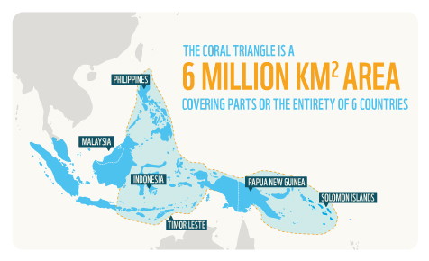 The Coral Triangle is a 6 million km2 area covering part or the entirety of 6 countries