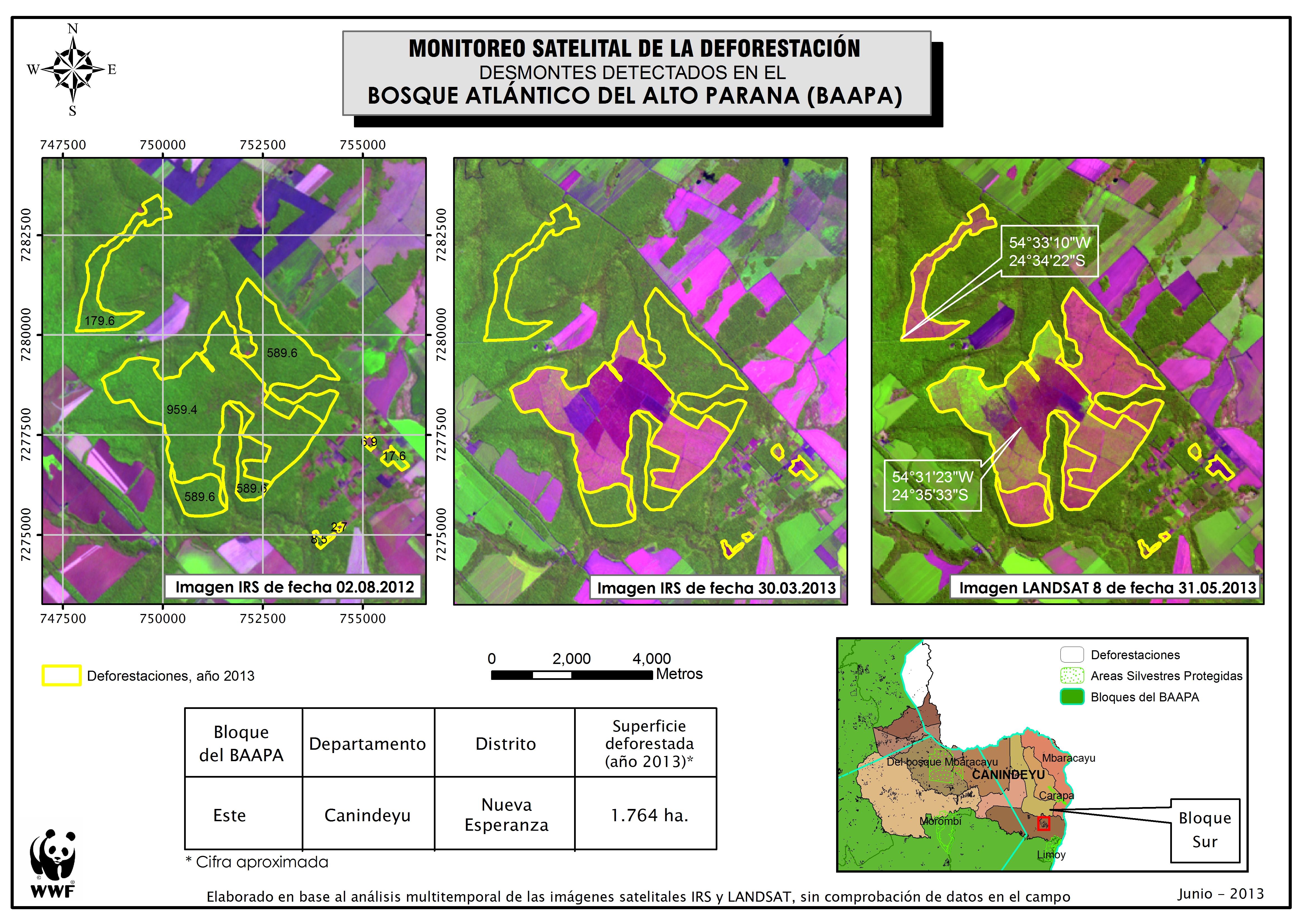 1 764 hectáreas de deforestaci³n detectadas en el departamento de Canindeyº
