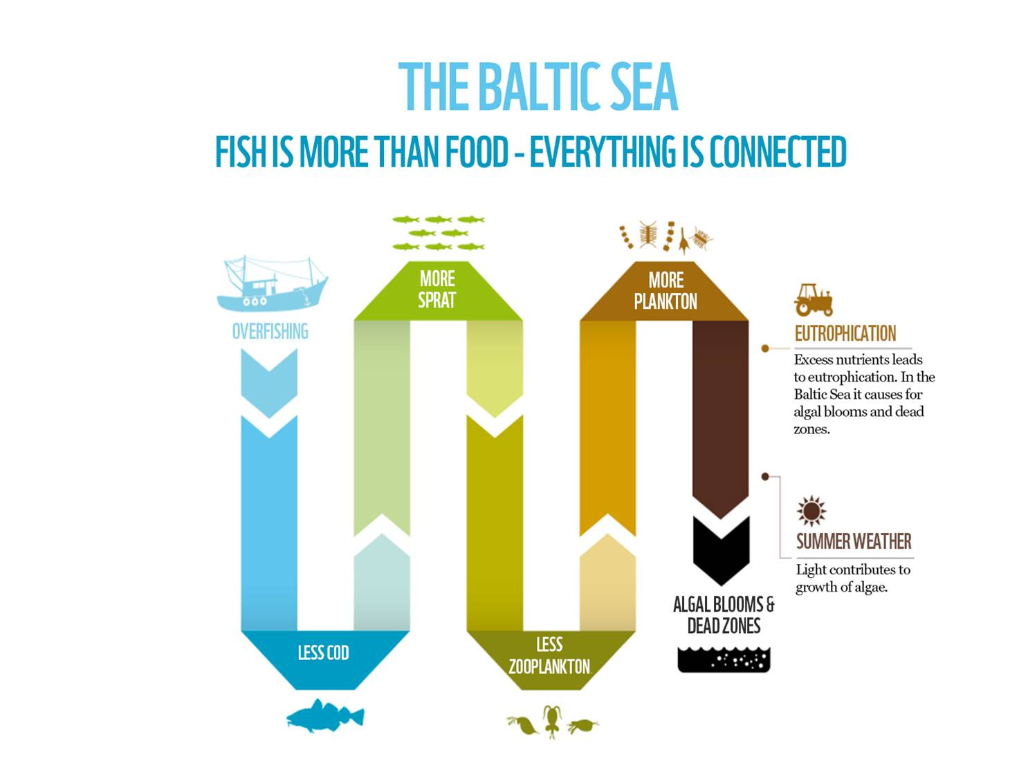 Unsustainable fishing threat to the Baltic Sea