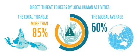 More than 85% of reefs in the Coral Triangle are directly threatened by local human activities.