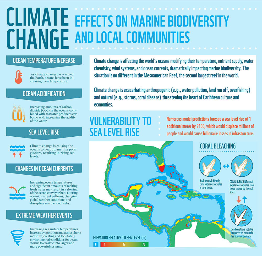 impact of climate change on wildlife pdf