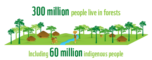 300 million people live inforests